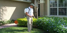 Pest Control and Exterminators