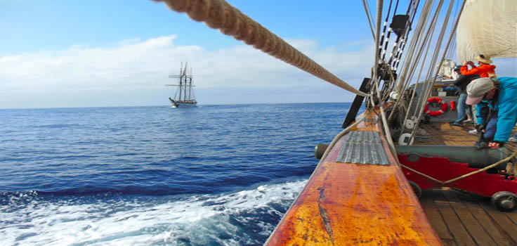 sailing-view-other-tall-ship