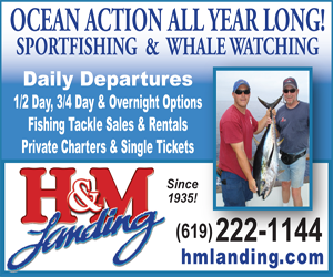H and M Landing Sports fishing