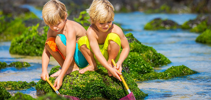 kids-playing-tidepool