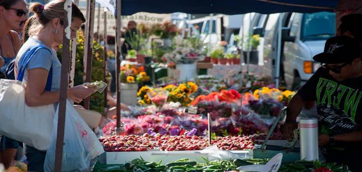 Ocean Beach Farmers' Market