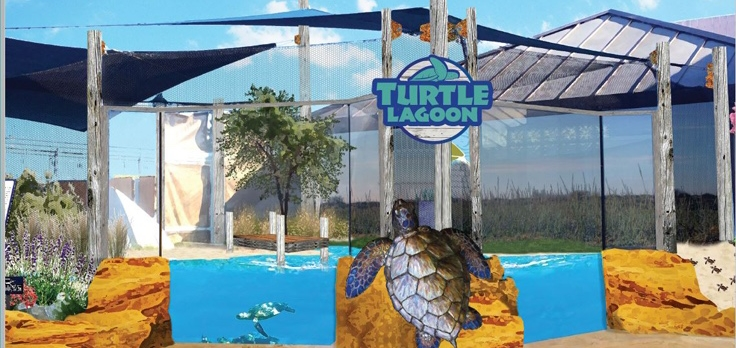 LCDC Turtle Lagoon Enhancement Project – Rendering