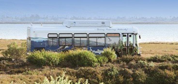 Living-Coast-Discovery-Center-bus