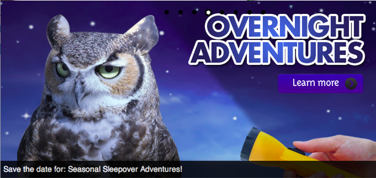 overnight-adventure