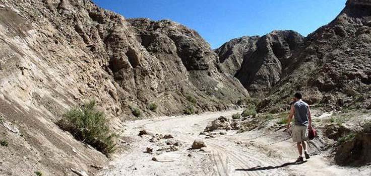 borrego-springs-desert