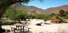 Agua-caliente-campground
