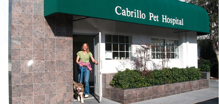 Cabrillo-Pet-Hospital-2