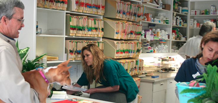 Cabrillo-Pet-Hospital-4