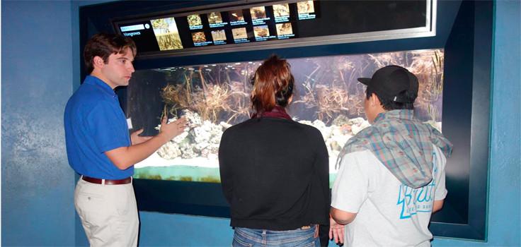 birch aquarium edcucation
