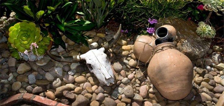 Fiesta de Reyes-Courtyard-Plants-3