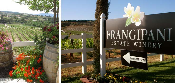 Frangipani Winery Sign copy
