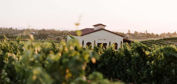 DeAnza del sol winery view2