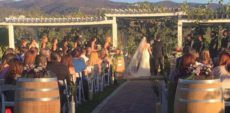 frangipani winery wedding