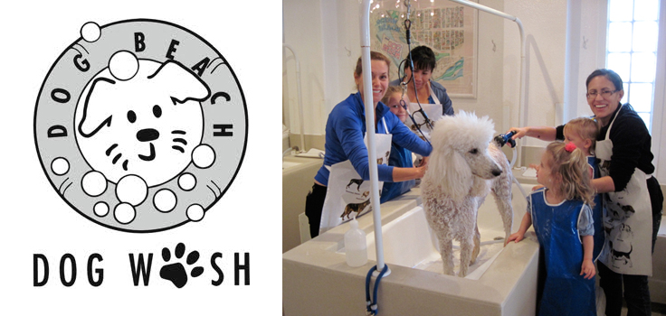 Dog Wash Logo