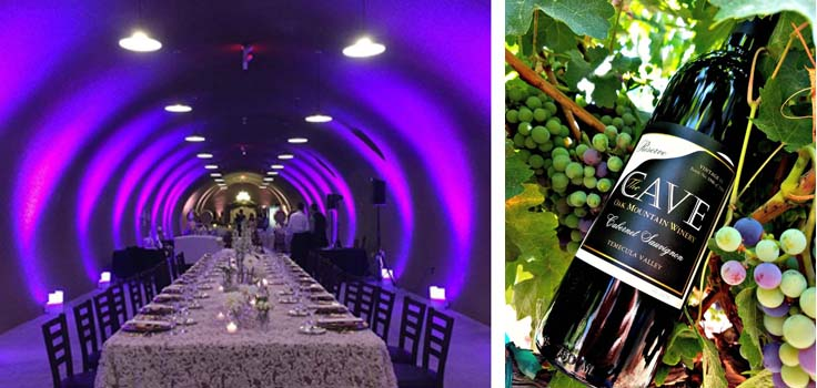 The CAVE - Oak Mountain Winery