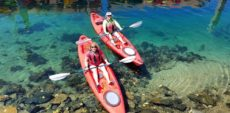 Aqua Adventures Kayaking Paddleboards, rentals