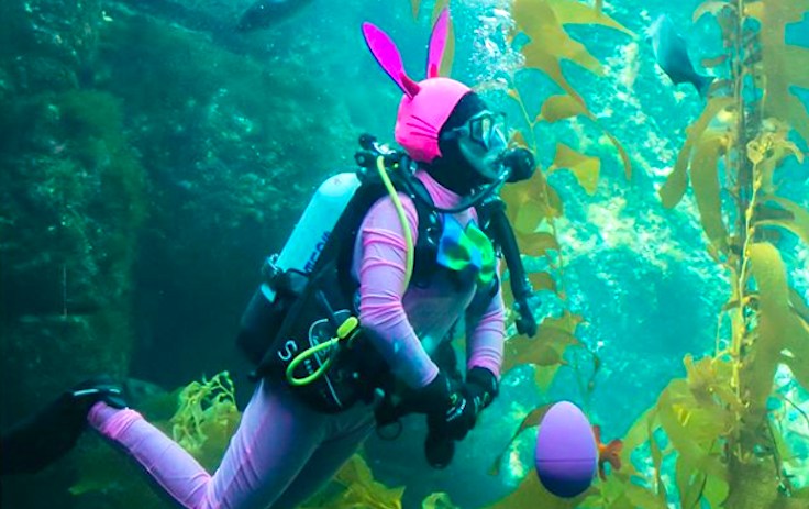 Celebrate Spring With An 'Eggstravaganza' at Birch Aquarium