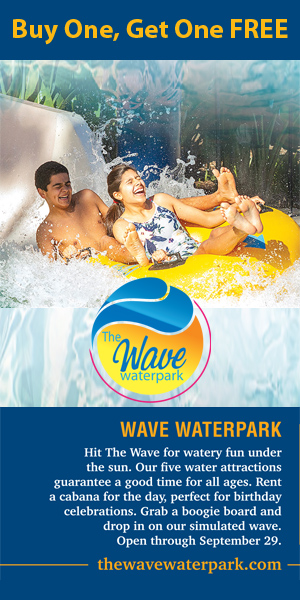 the wave waterpark coupon
