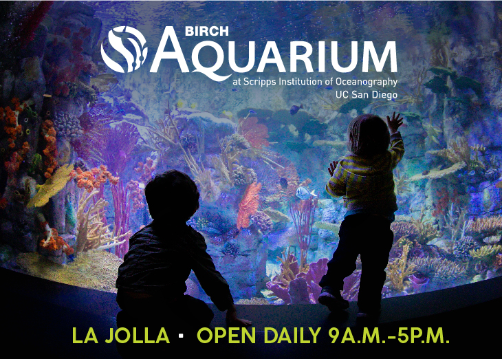 Birch Aquarium at Scripps Big Box Banner