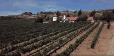 Somerset Winery Temecula