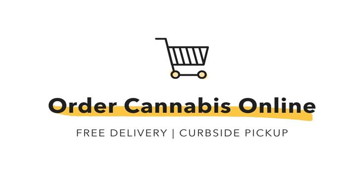 Torrey Holistics order-cannabis-online