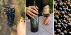 Wiens Winery Temecula